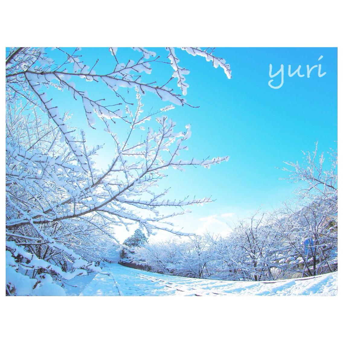 京都の雪景色穴場スポット!蹴上インクラインに行ってきた