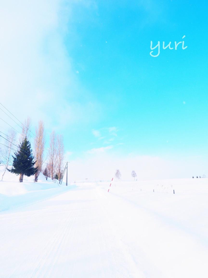 冬の北海道⑧冬の美瑛を徒歩で巡ったらとんでもない絶景に出会った話