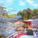 雪の京都リベンジ!美しすぎる雪の醍醐寺に感動