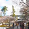 雪の京都リベンジ②南禅寺へ急ぐも、、