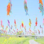 期間限定!ポップでカラフルな鯉のぼりに出会える摂津市大正川へ