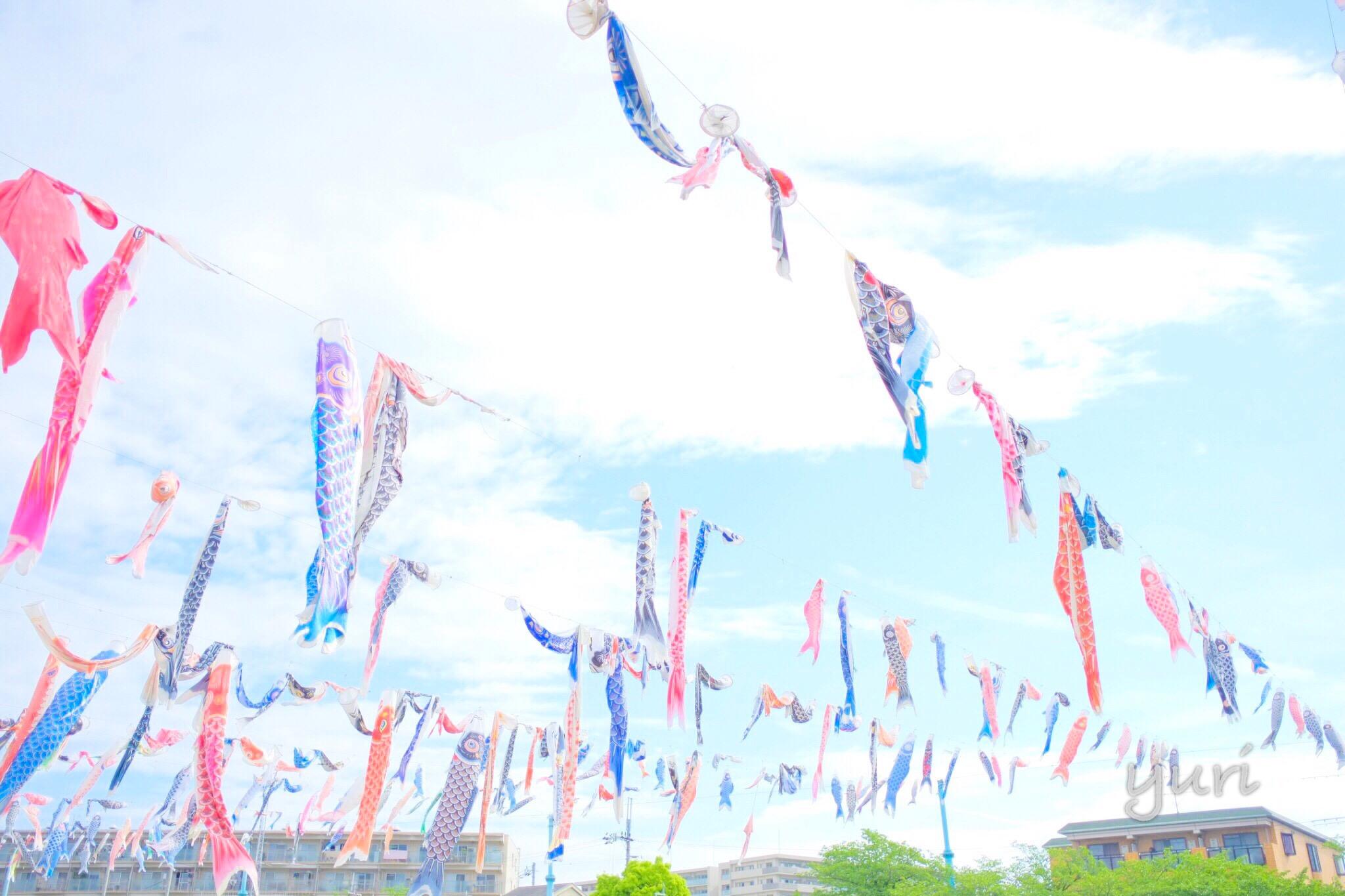 関西一フォトジェニックな鯉のぼりを撮れる場所「高槻こいのぼりフェスタ」へ