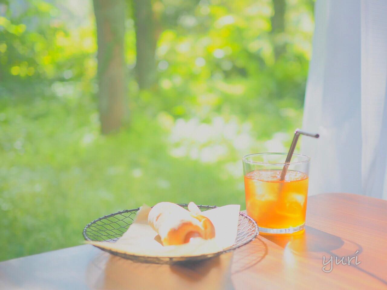 都会の真ん中なのに森の中!?パンとエスプレッソと 京町堀に行ってきた話