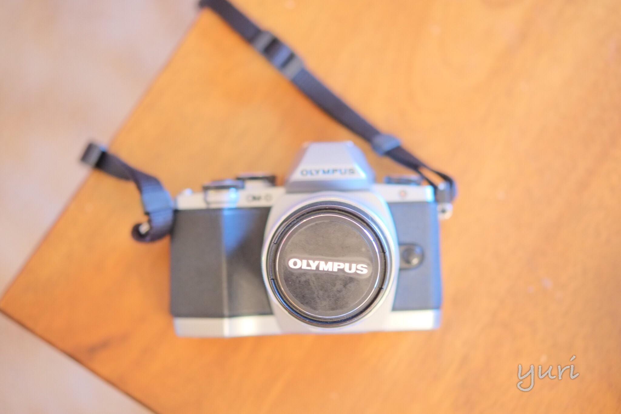 私のカメラ履歴書