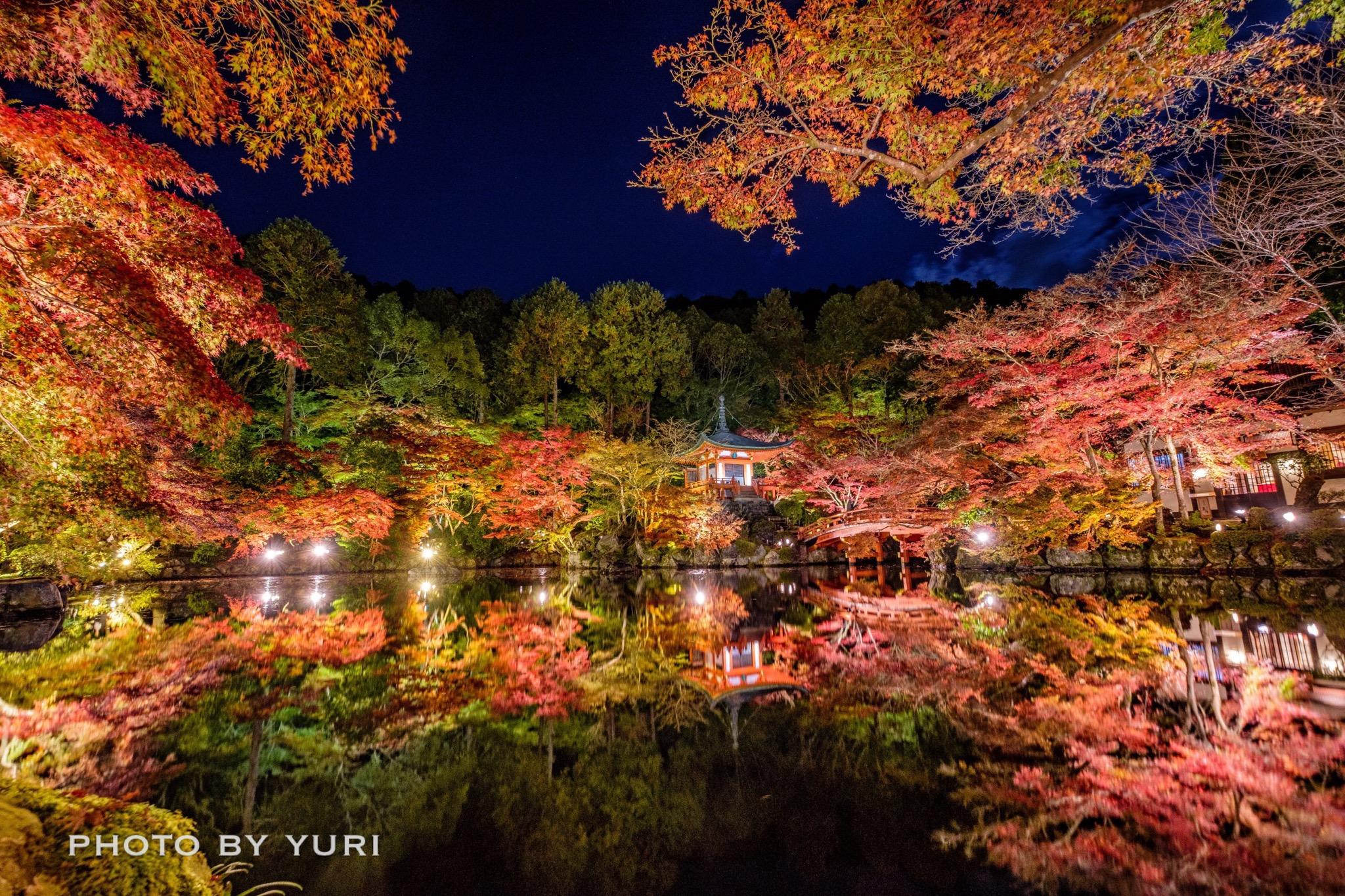 秋の京都「インスタグラムキャンペーン」優秀賞を受賞しました