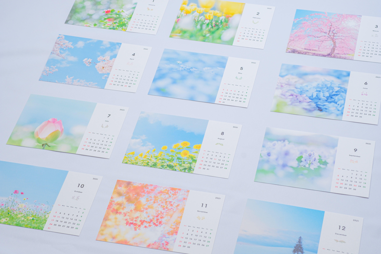 【11月30日締め切り】2021年版カレンダー販売を始めます【ふんわりお花写真】