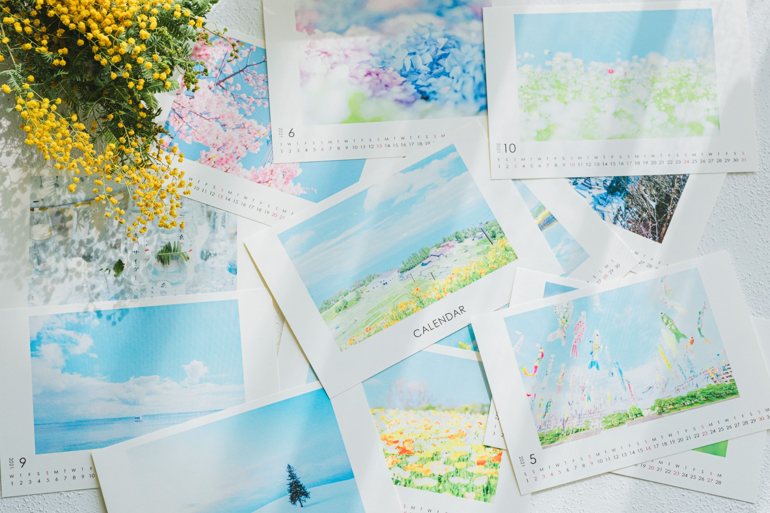 【4月末までクーポンあり】FUJIFILM製作オリジナルカレンダー「COYOMI」を作ってみた!